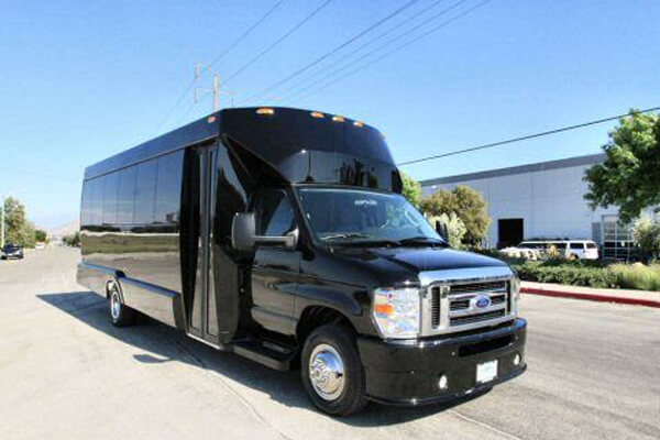 20 Passenger Party Bus Noblesville